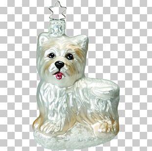 Yorkshire Terrier West Highland White Terrier Maltese Dog Cairn Terrier Scottish Terrier PNG