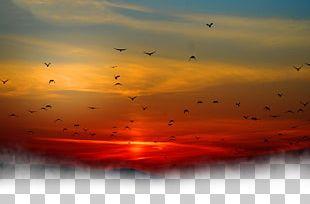 Sunset Sky Cloud PNG