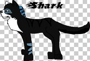 Whiskers Cat Cougar Mammal Horse PNG