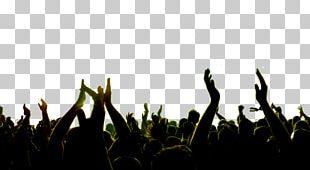 Concert Music Festival Art Musician PNG