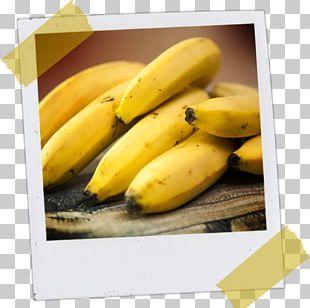 Banana Plantation Peel Food Cooking Banana PNG
