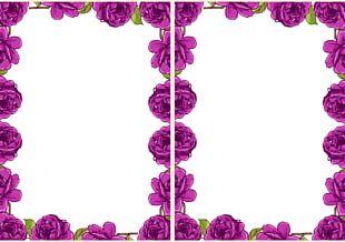 Garden Roses Paper Floral Design Drawing PNG