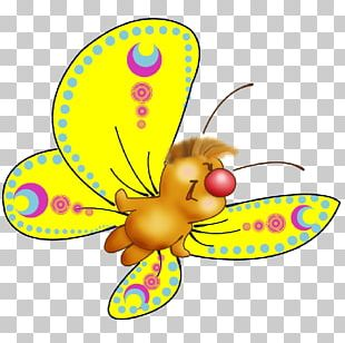 Butterfly Desktop PNG