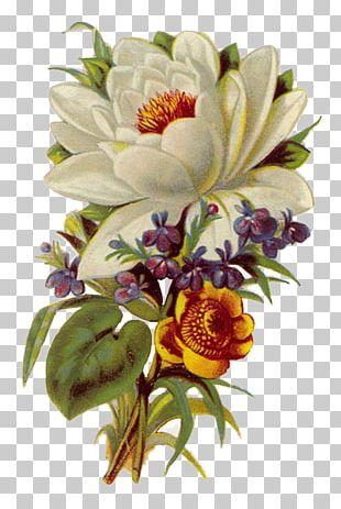 Floral Design Flower Bouquet Art PNG