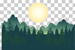 Forest PNG