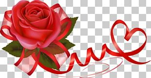 Valentine's Day Flower Rose Heart Gift PNG
