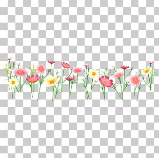 Arranging Cut Flowers Blog PNG
