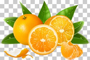 Juice Lemon Grapefruit Orange PNG