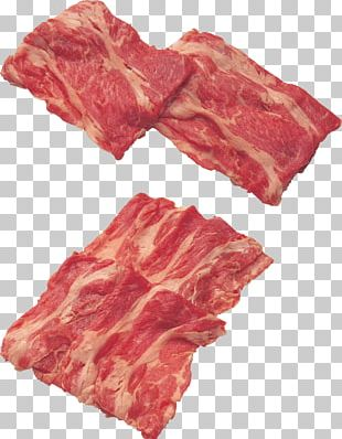 Meat PNG
