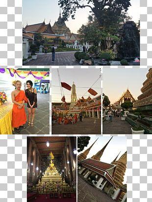 Wat Pho Temple Buddhism Thai Massage PNG