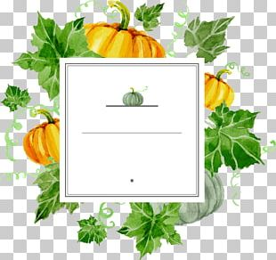 Calabaza Pumpkin Turkey Matcha Thanksgiving PNG
