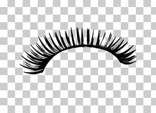 Eyelash Extensions Photography PNG