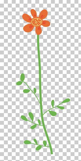 Wildflower Petal PNG