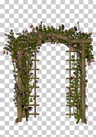 Arch PNG