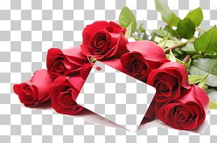 Valentine's Day Propose Day Love Gift February 14 PNG