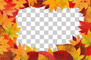 Autumn Leaves PNG