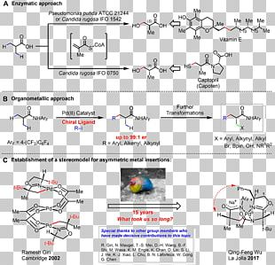 Chirality Organic Chemistry Methyl Group Molecule PNG