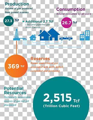 Natural Gas American Gas Association Trans-Saharan Gas Pipeline Organization Public Utility PNG