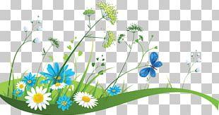 Banner Spring Illustration PNG