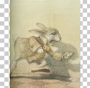 Alice's Adventures In Wonderland And Through The Looking-Glass Illustrated Alice PNG