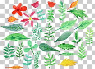 Flower Leaf Watercolor Painting Floral Design PNG