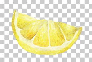 Lemon Watercolor Painting PNG