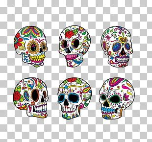 Calavera Skull Illustration PNG