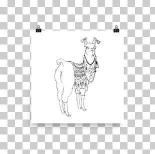 Giraffe Poster Paper Canvas Horse PNG
