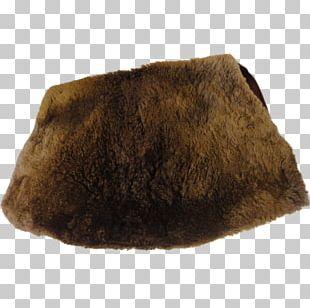 Fur Beaver Muff Biberfell Snout PNG