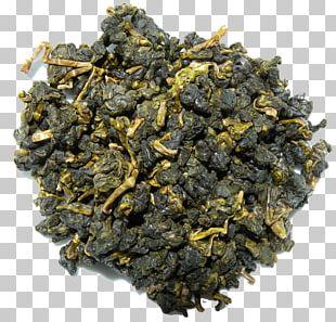 Gunpowder Tea Oolong Nilgiri Tea Green Tea PNG