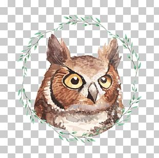 Owl Watercolor Painting Poster Illustration PNG