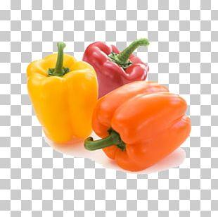 Bell Pepper Capsicum Vegetable Carrot Chili Pepper PNG