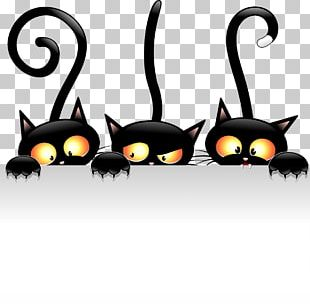 Black Cat Drawing Cartoon PNG
