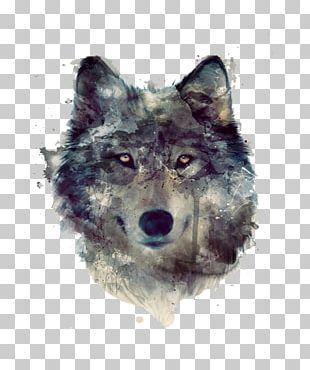 Dog Lion Pack PNG