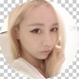 Eyebrow Hair Coloring Eyelash Cheek Chin PNG