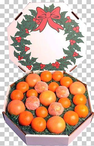 Tangerine Mandarin Orange Clementine Florida PNG