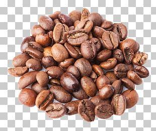 Coffee Bean Cappuccino Java Euclidean PNG