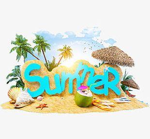 Summer Holiday PNG