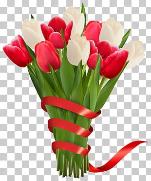 Flower Bouquet Tulip Red PNG