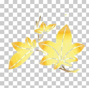 Maple Leaf Euclidean Gold PNG
