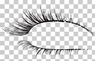 Eyelash Extensions Brush Drawing PNG