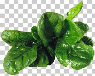 Spinach Salad Vegetarian Cuisine Leaf Vegetable PNG