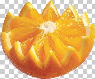 Citrus Xd7 Sinensis Orange Auglis PNG