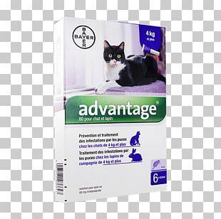 Cat Flea Dog Flea Treatments PNG