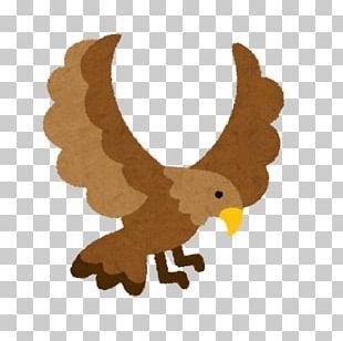 Hawk いらすとや はつゆめちょうじゃ 厌胜物 PNG