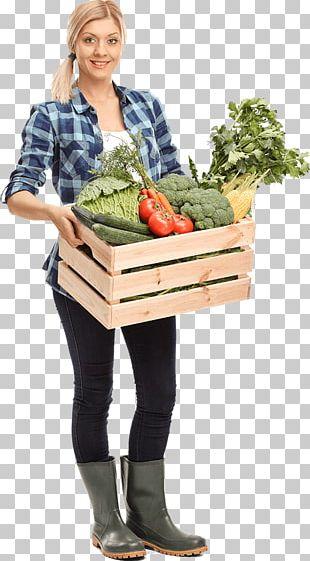 Organic Food Vegetable Agriculture Fertilisers PNG