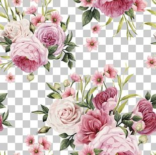 Rose Pink Flowers Pink Flowers Color PNG
