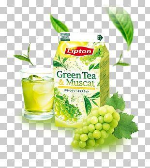 Green Tea Juice Bancha Drink PNG