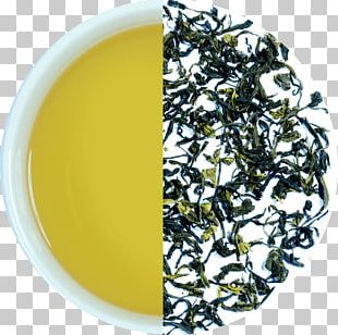 Hōjicha Nilgiri Tea Darjeeling Tea Assam Tea Green Tea PNG