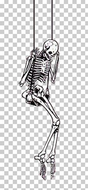 Skeleton Skull Scary Halloween PNG